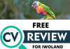 Free CV Review For Final Year Students and Corps Members From Iwoland